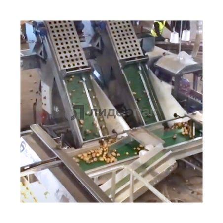 Комплекс калибровки и упаковки картофеля в СМР и Биг-Бэг #1